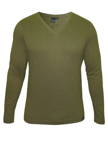 https://static.cilory.com/144295-thickbox_default/rigo-green-v-neck-t-shirt.jpg