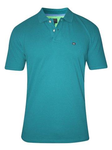 https://static8.cilory.com/172195-thickbox_default/arrow-green-polo-t-shirt.jpg