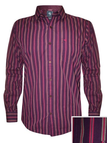 https://static.cilory.com/173558-thickbox_default/peter-england-purple-casual-stripes-shirt.jpg