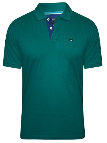 https://static6.cilory.com/206567-thickbox_default/arrow-green-solid-polo-t-shirt.jpg