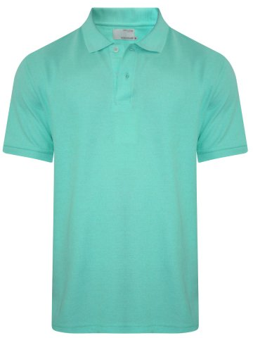 https://static4.cilory.com/296666-thickbox_default/peter-england-crystal-blue-polo-t-shirt.jpg