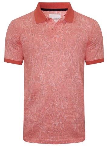 https://static6.cilory.com/299422-thickbox_default/peter-england-peach-polo-t-shirt.jpg