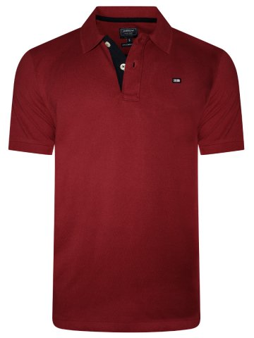 https://static4.cilory.com/369236-thickbox_default/arrow-red-solid-polo-t-shirt.jpg
