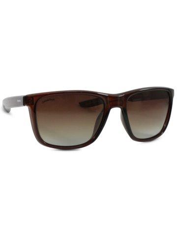 https://static4.cilory.com/383109-thickbox_default/o-positive-brown-wayfarer-sunglasses.jpg