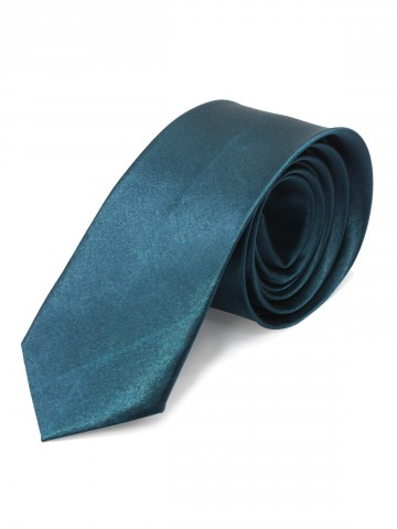 https://static7.cilory.com/77882-thickbox_default/plain-polysilk-tie.jpg